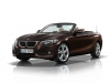 bmw serie 2 cabriolet 2015 advantage sparkling brown