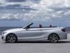 nouvelle bmw serie 2 cabriolet 228i (16)