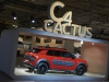 Citroen C4 Cactus 2014 (38)