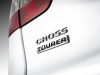 logo Citroen C5 CrossTourer 2014