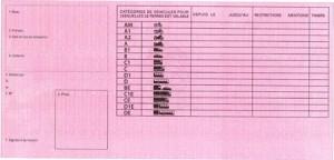 2013-visuel-nouveau-permis-conduire-rose