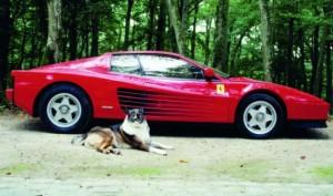 Ferrari Testarossa de Alain Delon