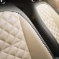 Volkswagen coccinelle 2014_couture_sellerie_beige