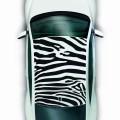 Volkswagen coccinelle 2014_vue_dessus_art_zebre_bd