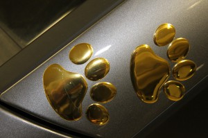 stickers voiture pattes de chien
